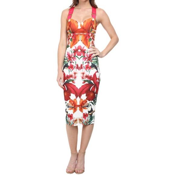 47a1b846d8167 Ted Baker orange jameela toucan Dress NWOT Small. M 5b38e03403087c0d4ba7b904